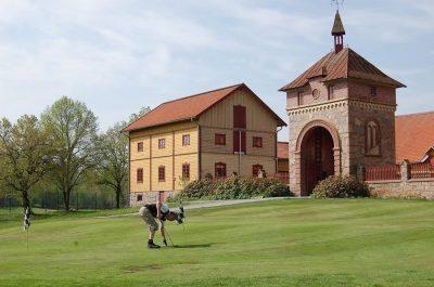 Örbyhus Golfklubb